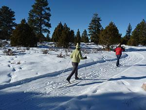 Cross Country Ski around FGR!
